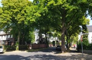 Keine Verdichtung im Auenviertel in Köln-Rodenkirchen