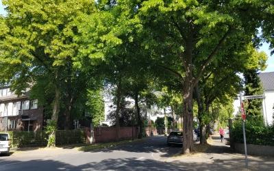 Keine Verdichtung im Auenviertel in Rodenkirchen – Neuer Bebauungsplan-Entwurf