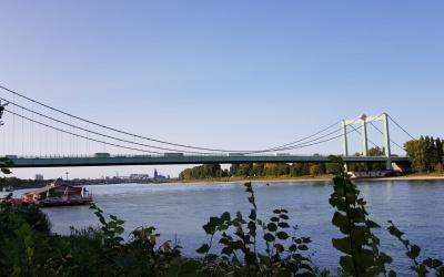 Gegen den Abriss der Rodenkirchener Brücke! Unveröffentlichte Fotos vom Brückenbau 1940